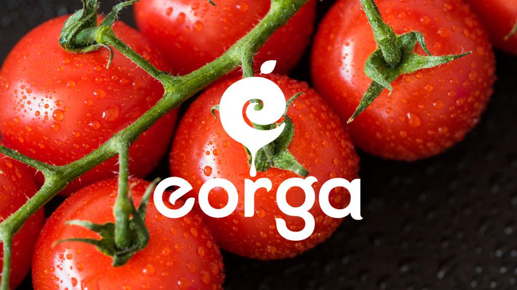 Eorga Organic Foods Kochi Logo Design Presentation